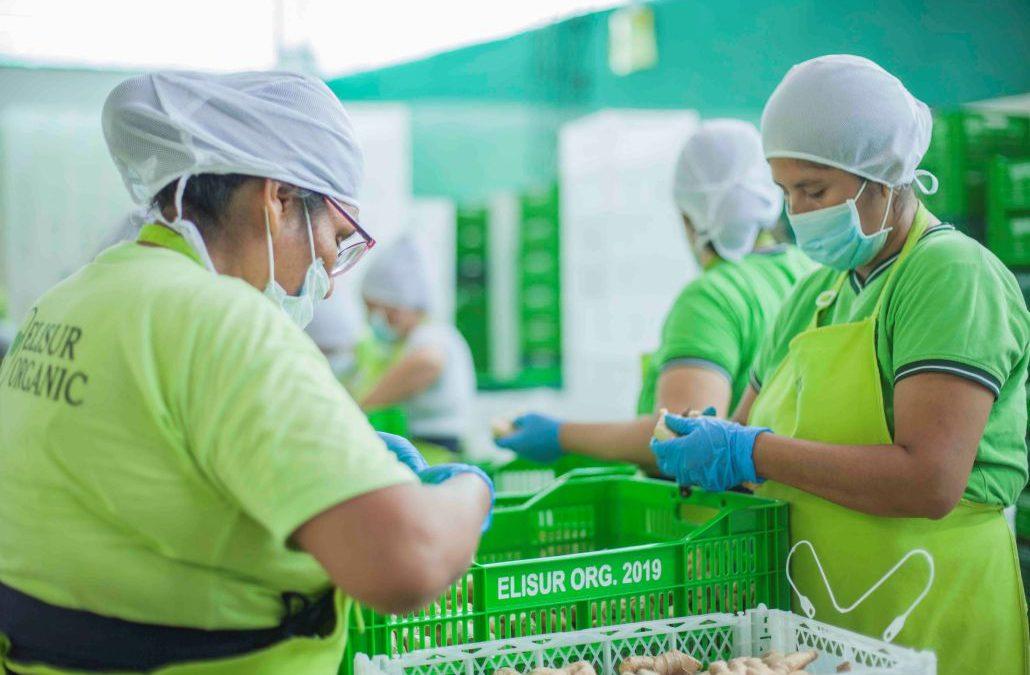 Women play a big role at Elisur Organic