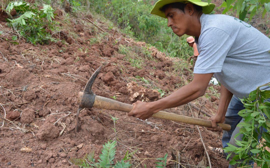 A farmer's company for the world, Elisur Organic SAC – VIDEO