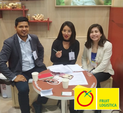 Participation in International Fairs